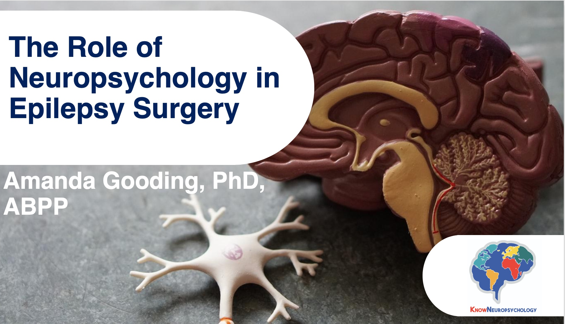 The role of neuropsychology in epilepsy surgery lecture recording