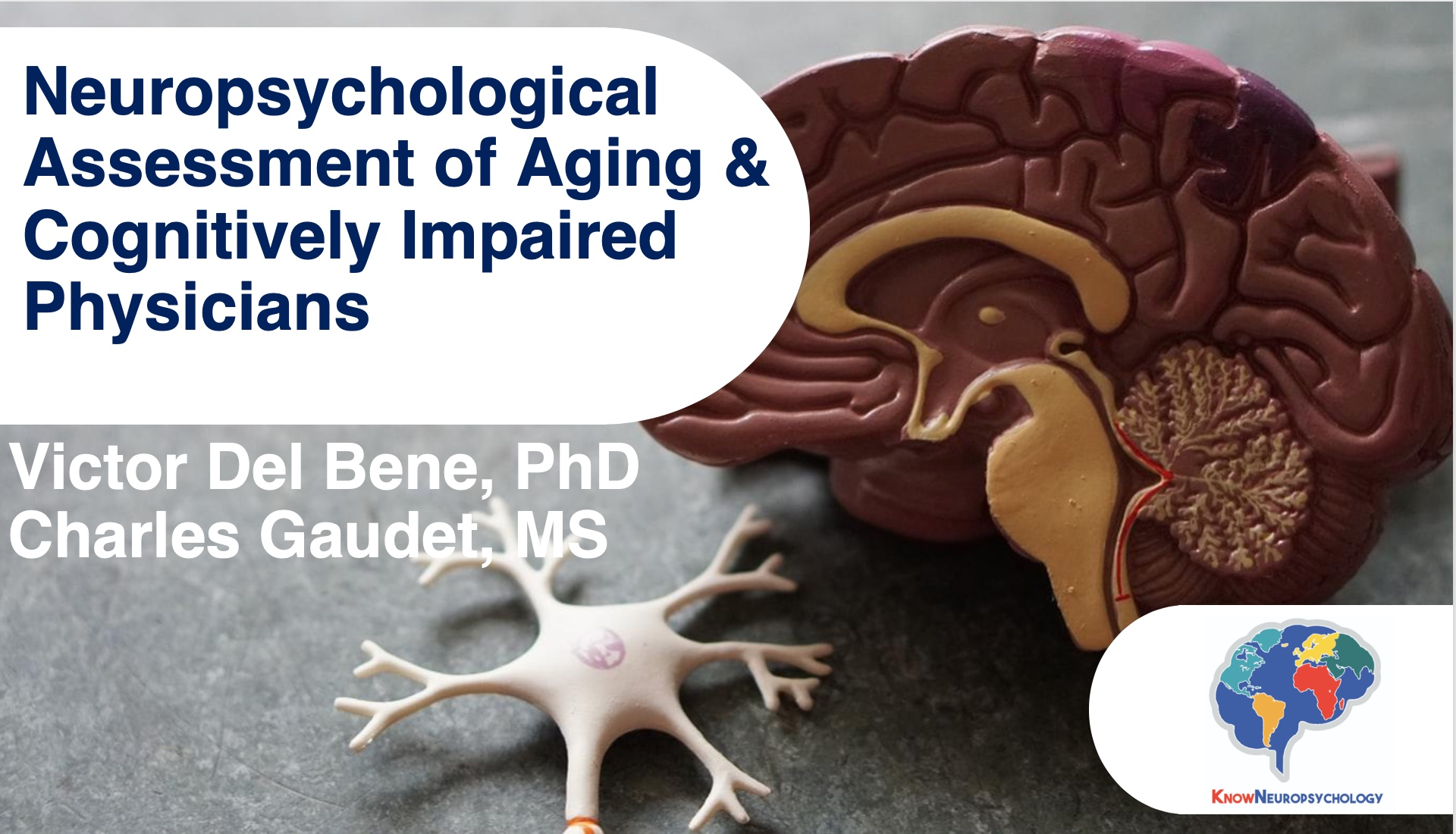 neuropsychological assessment of aging and cognitively impaired physicians lecture recording