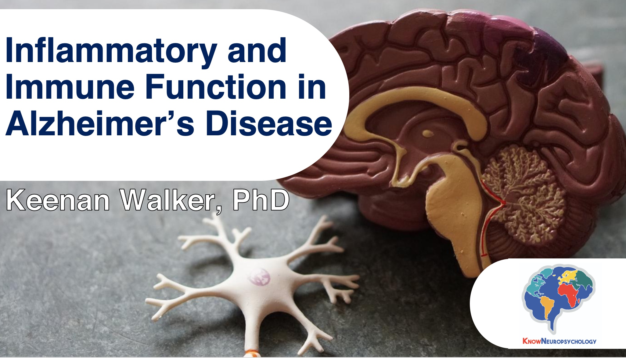 Inflammation and immune functioning in Alzheimer's disease by Dr. Keenan Walker
