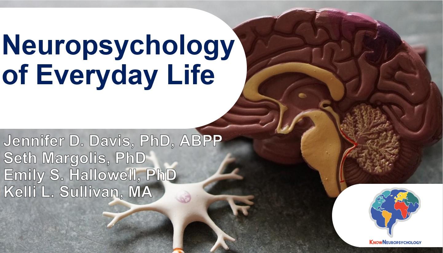The neuropsychology of everyday life by Dr. Seth Margolis, Dr. Jennifer Davis, Dr. Emily Hallowell, and Ms. Kelli Sullivan