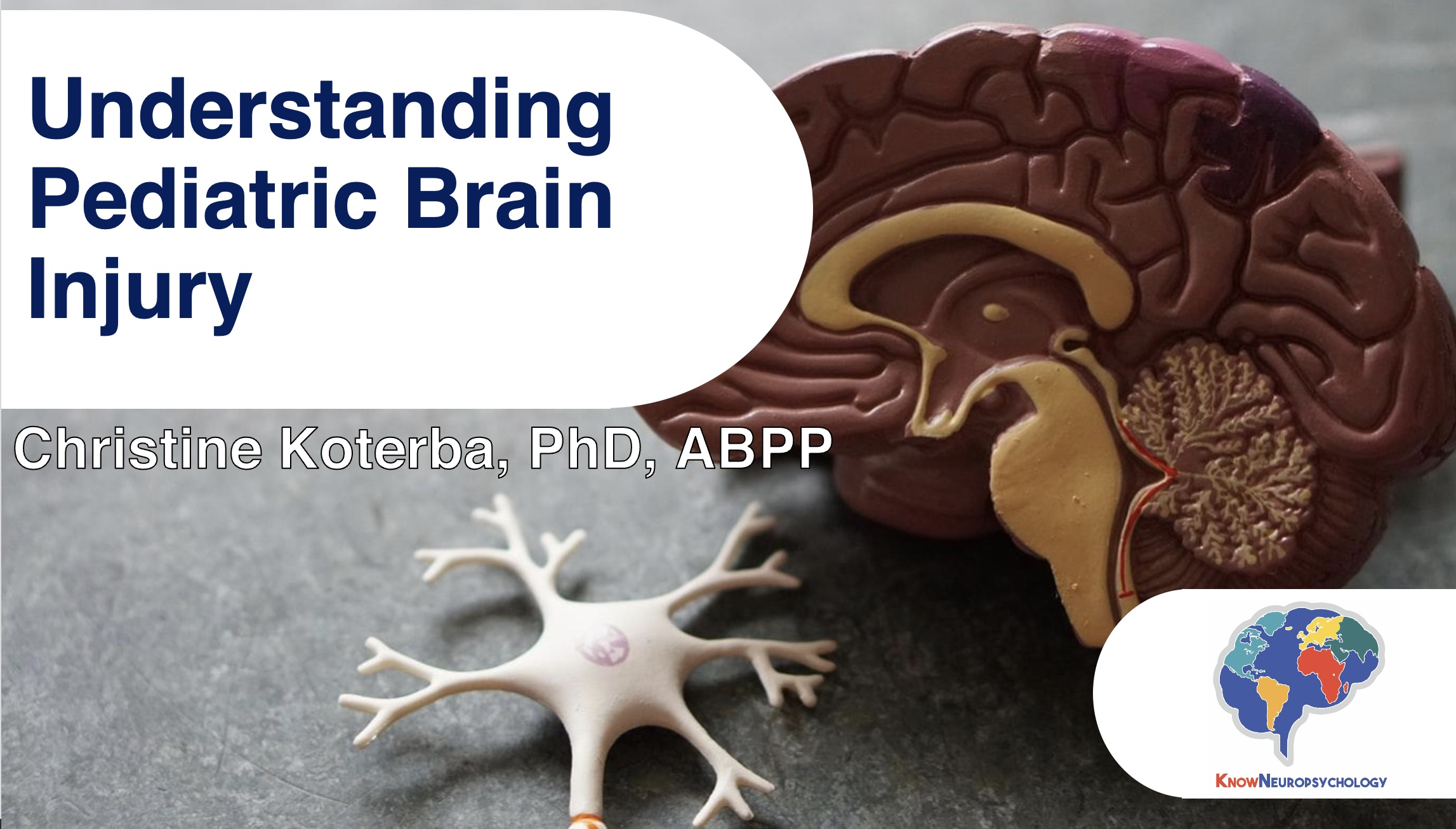 Understanding Pediatric Brain Injury with Dr. Christine Koterba