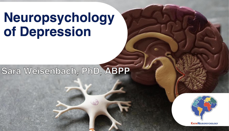 Neuropsychology of Depression with Dr. Sara Weisenbach