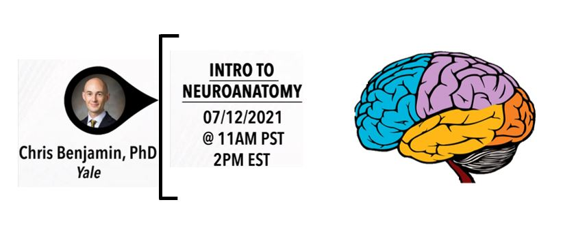 Introduction to Neuroanatomy with Dr. Chris Benjamin